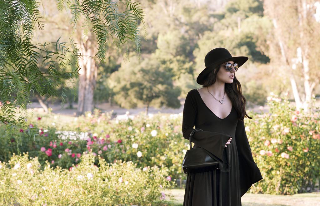 rose garden 104 zps0xmo9cir Closet Staples: Classy Black Dress